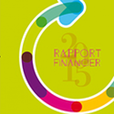 Rapport financier CCI de Toulouse 2015
